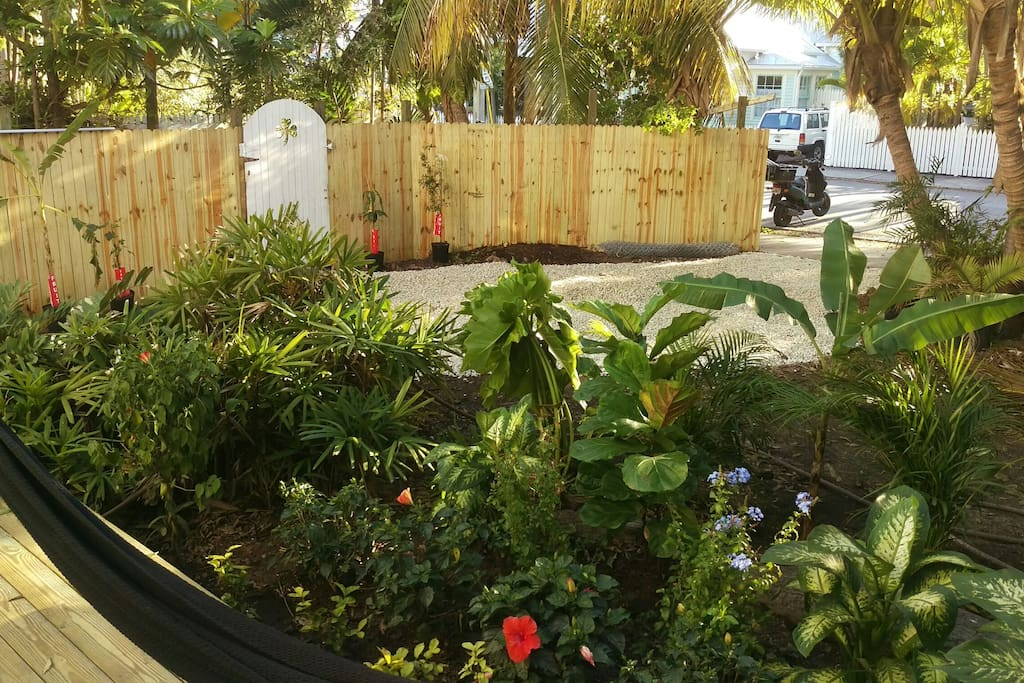 very large side yard with flowers and fruit trees large deck/grill
