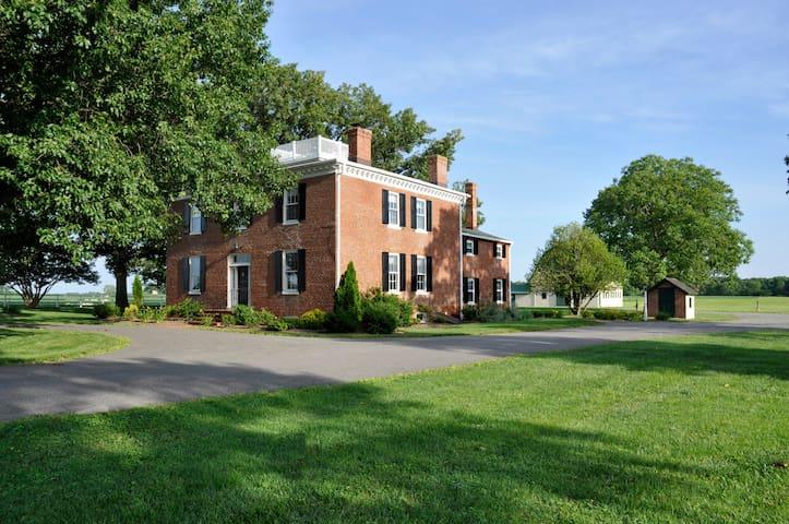 Running Fox - Chestertown - House
