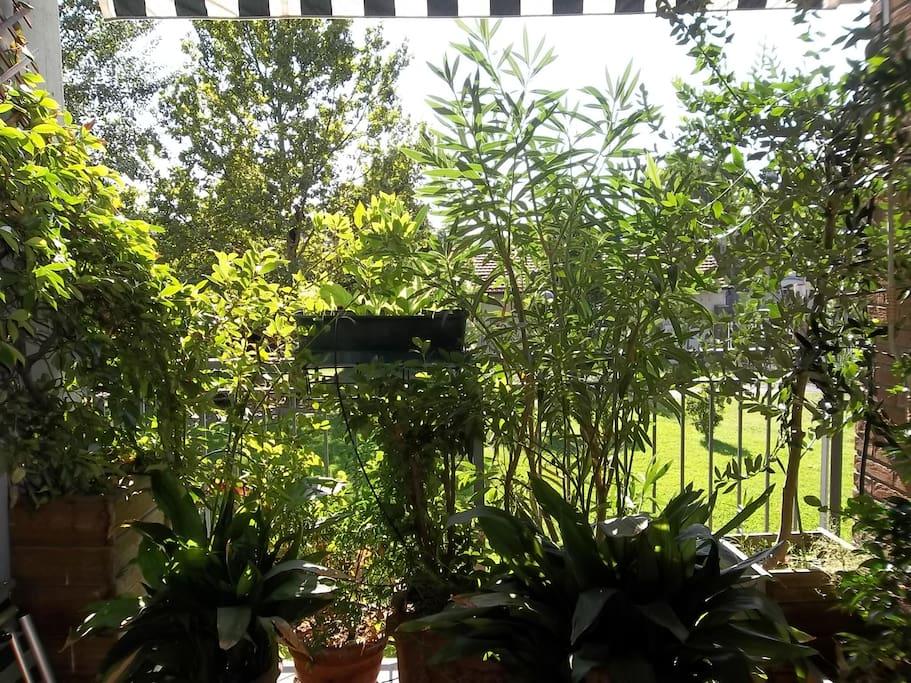 la terrazza della camera
