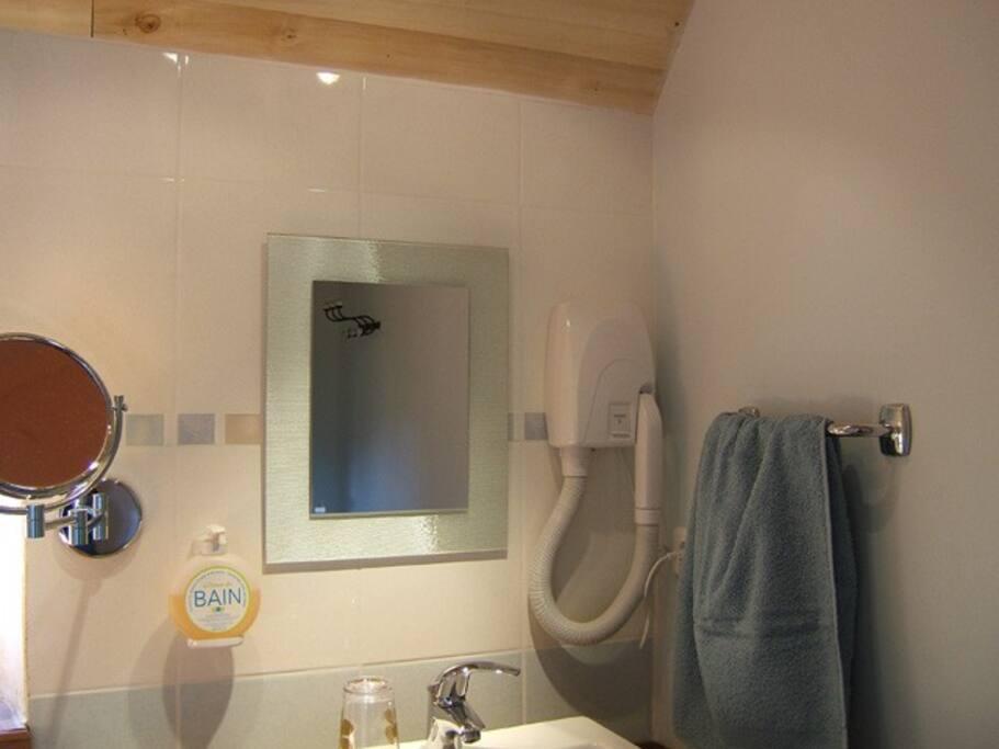 Bel équipement de la salle de bain, sèche-cheveux mural