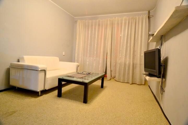 Lovely 2 Bedroom Kiev Apt ID 100 - Kiova - Huoneisto