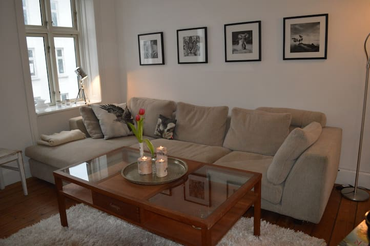 Lovely apartment - great location! - Copenhague - Appartement