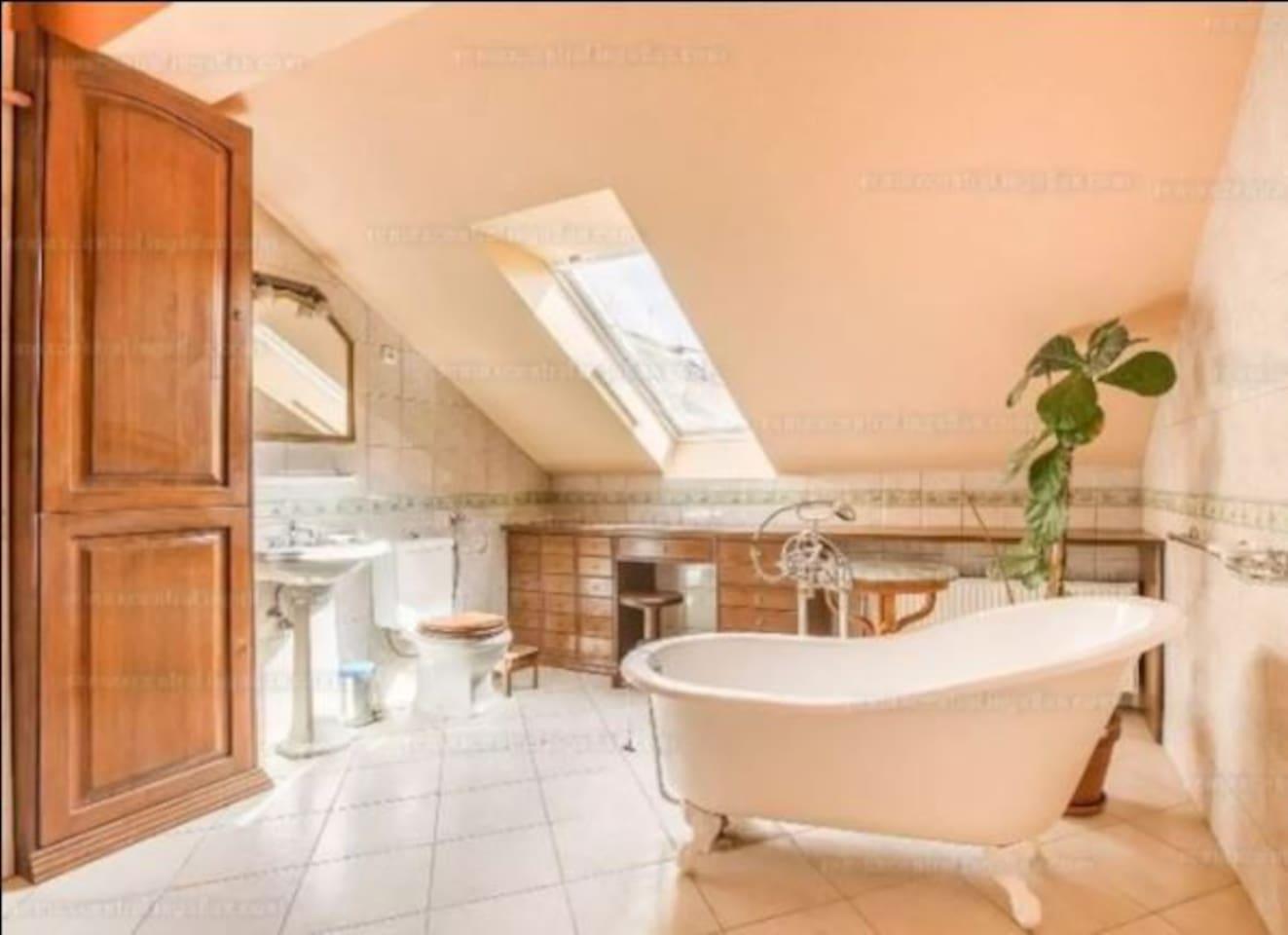 the beautiful renaissance style bath