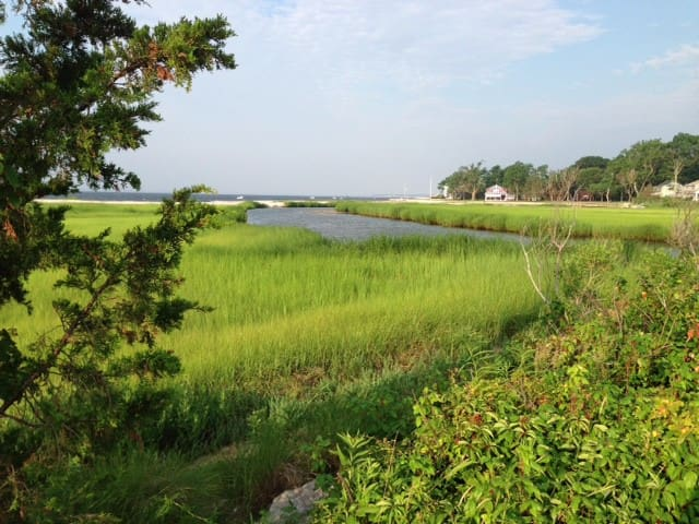 Sunny 1 bedroom apt ~ NORTH FORK - Mattituck - Appartement
