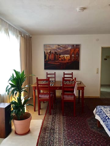 Comfortable spacious apartment next to Frankfurt