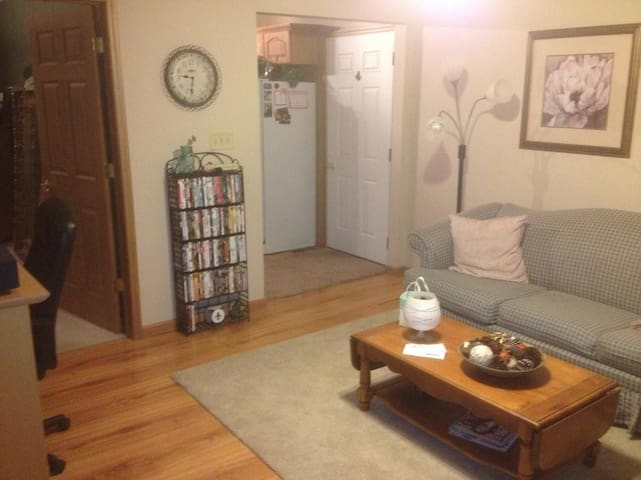 Super Bowl Apartment for Rent l!! - Greenfield - Leilighet