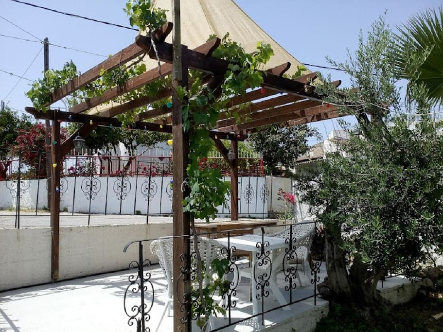 Our patio with furnitures and grapes