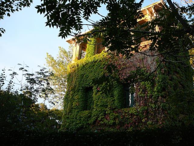 Beautiful Villa Ocampo. 17 blocks from the apartment, which are pleasant to walk.
