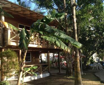 Inside the tropical garden ! - Juan Dolio