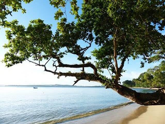 nyang nyang surf camp siberut - Padang - Dům