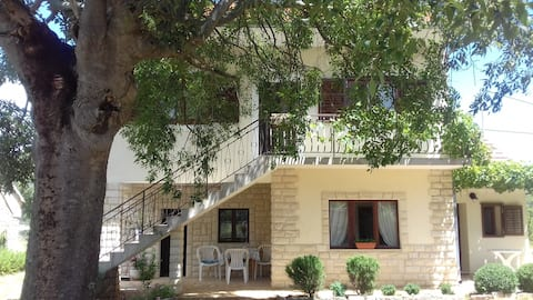 """Holiday house  """"Ana"""" with two separate apartments"""
