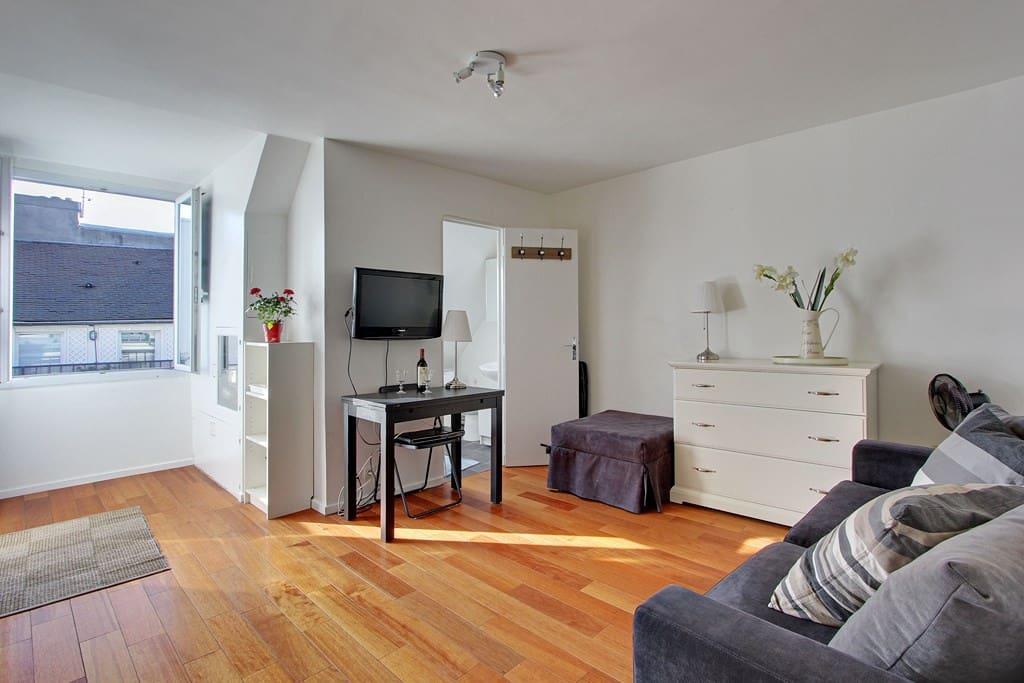 lovely studio buci street paris apartments for rent in paris le de france france. Black Bedroom Furniture Sets. Home Design Ideas