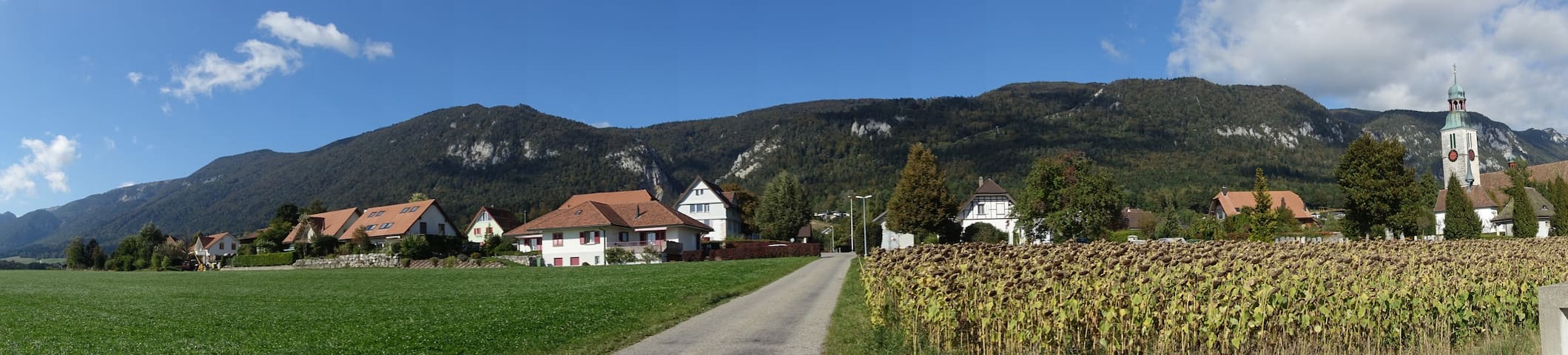 Swiss village apartment with breathtaking views - Oberdorf - Huoneisto