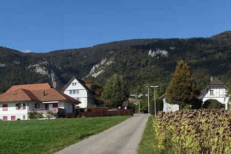 Swiss village apartment with breathtaking views - Oberdorf