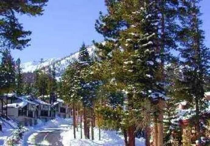 RV1 - By Canyon Lodge - Mammoth Lakes - Haus