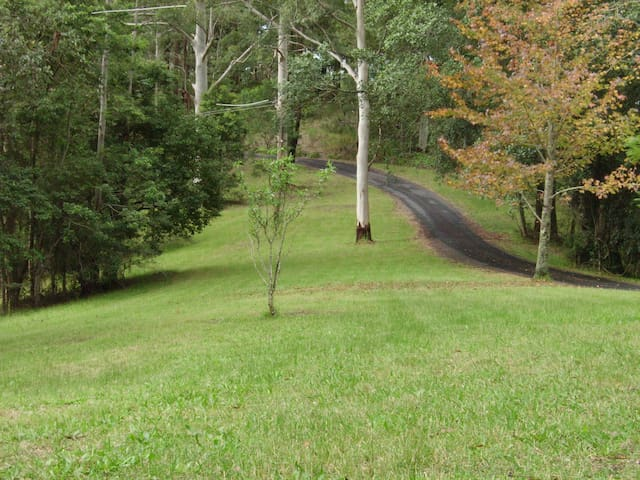 Tranquil bush acreage with comfortable 4 B/R home
