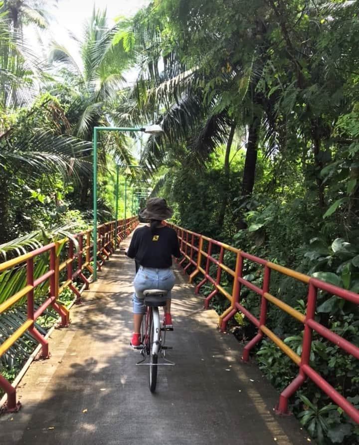 Small route among the jungle