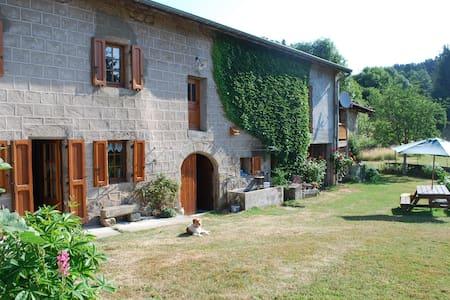 Ancienne ferme Auvergnate restaurée - Églisolles - House