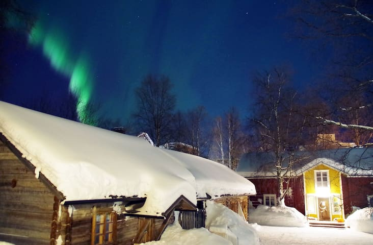 Northern lights from the yard. NOT fake:)