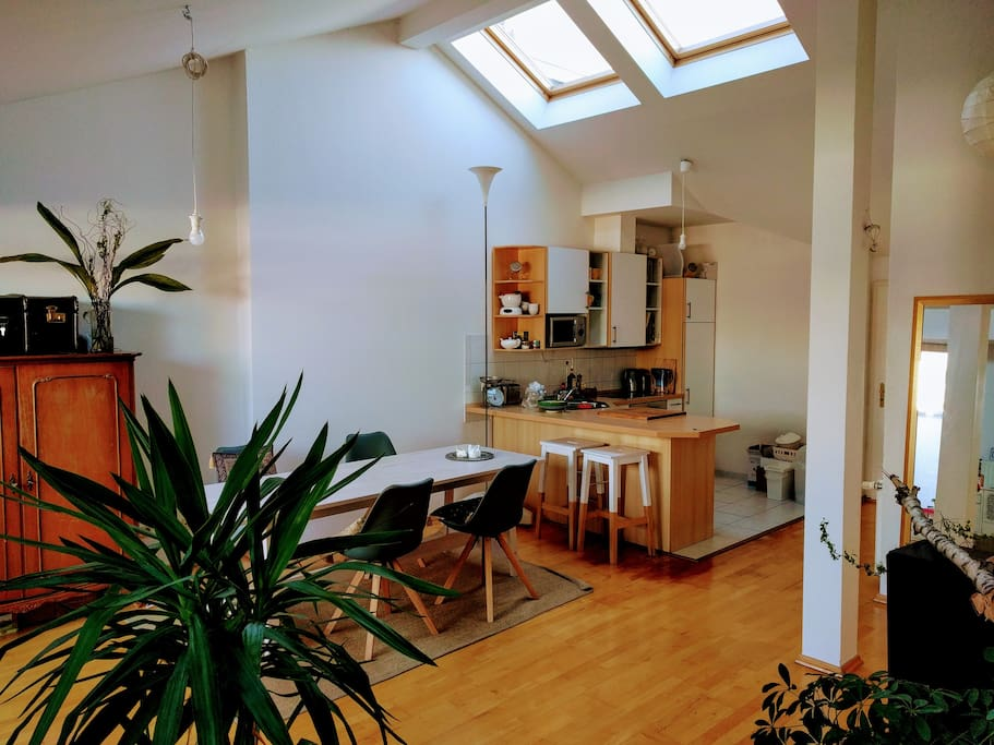 Big room with open kitchen, access to terrace and couch area