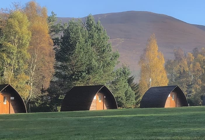 Wigwams 18-22 (add pets by contacting property)