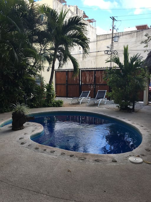 Shared swimming pool and chill-out area