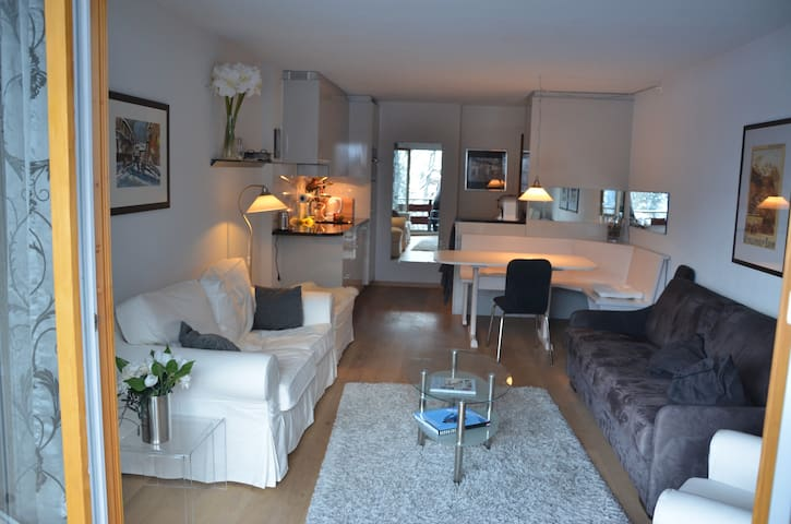 Luxurious 2 or 3 bedroom apartment,4-6 persons. - Lauterbrunnen - อพาร์ทเมนท์