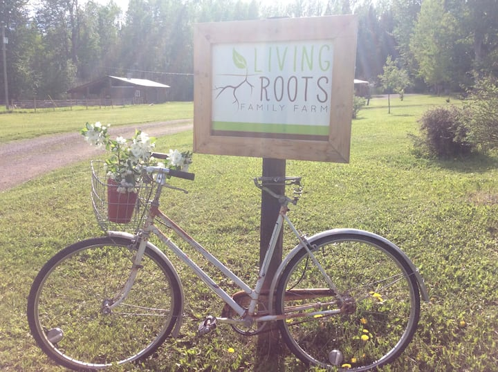 At natures foot step, Living Roots farm experience