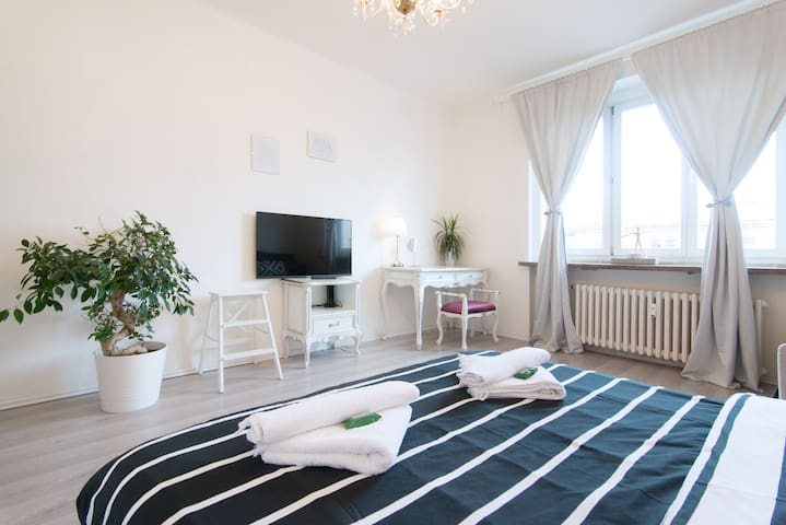 Two Bedroom Apartment in City Center, Žižkov