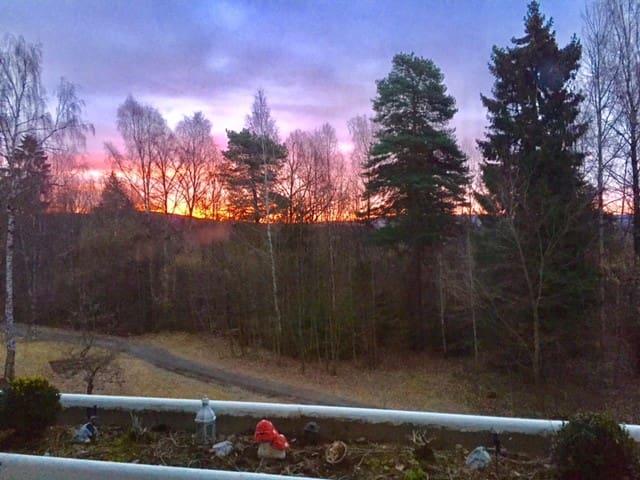 Oslo, close to nature. Sunny balcony. Silent. - Oslo - Apartamento