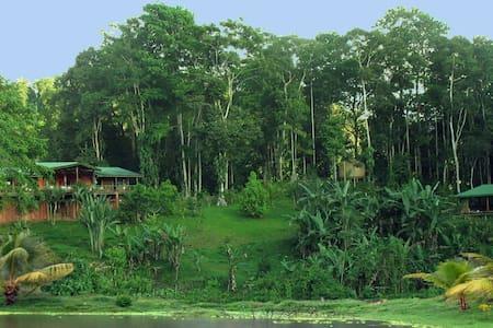 Casananda-jungle home in Platanillo - Ház