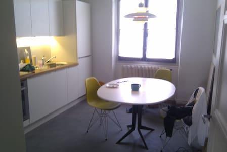 Nice flat, near the Geneva center - Ambilly - Huoneisto