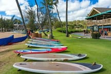 Paddle and surf boards for rent. Hawaiian canoe lessons also