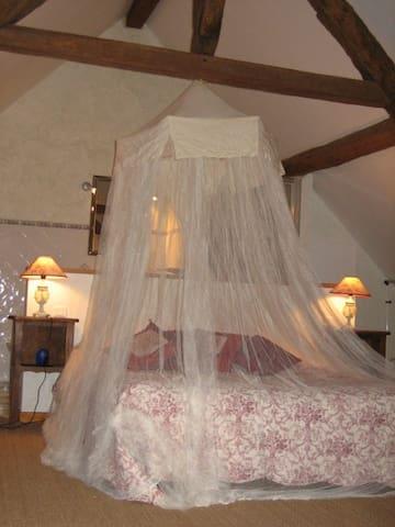 Chambre d'hôte Suite Persil - Murs