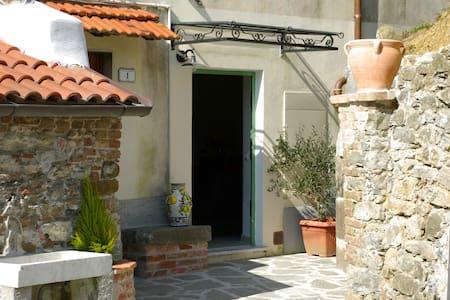 Discover Tuscany!