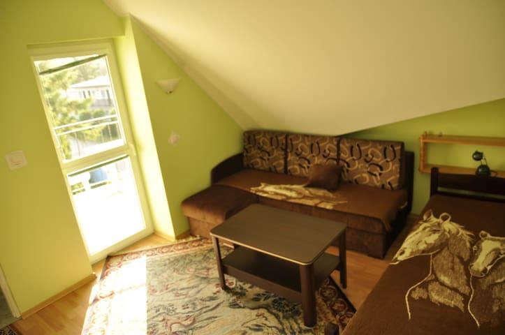 Apartament 4-osobowy typu studio - Dźwirzyno - Villa