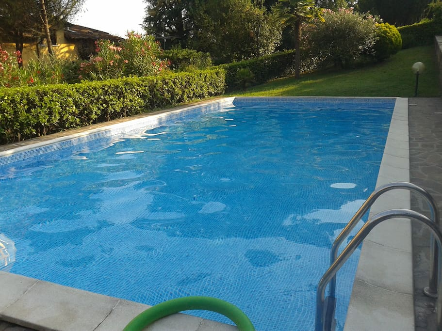 the pool in the garden
