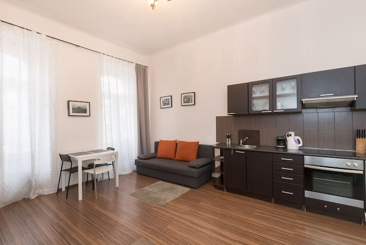 Cozy apartment in CENTRAL part of Prague.