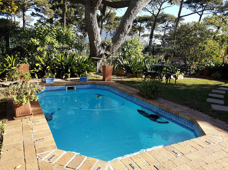 Bradclin House - Swimming Pool