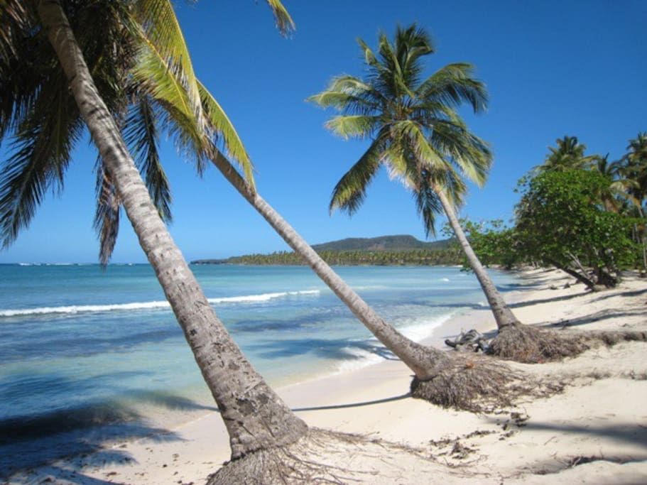 Little Beach (La Playita) is just a few minutes away on foot. Two restaurants, massage center, excellent snorkeling, soft white sand, swaying coconuts and a fantastic view.