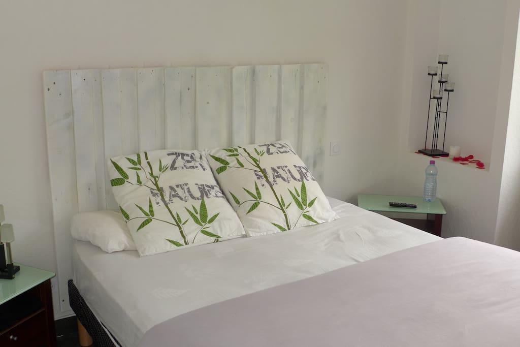 Chambre avec lit 160 x 200 et télévision