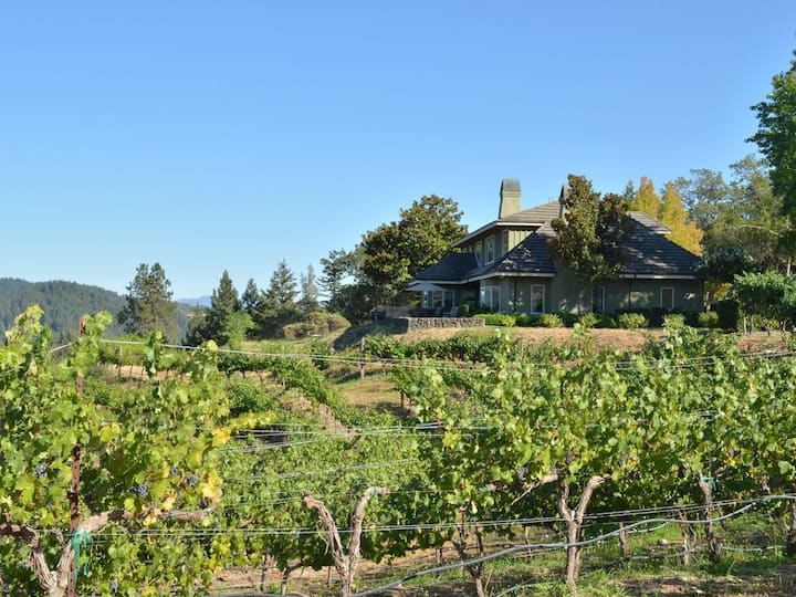 Beautiful Home Nestled in the Vines
