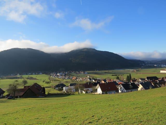 Urlaub in Ochsenwirts Ferienwohnung - Fischerbach