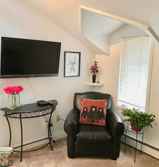Flat Screen TV and Goldilocks own chair to rest in when in her room.