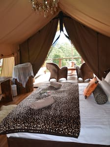 ESCAPE THE EVERYDAY - GLAMPING - Mount Burrell, near Mt Warning