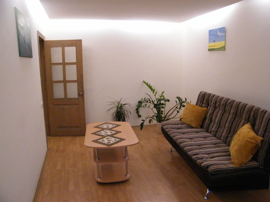 Guest spacious room. Sofa-bed opens up and is suitable for up to 2 persons to sleep comfortably.