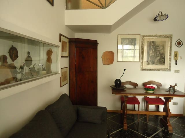 Museo House