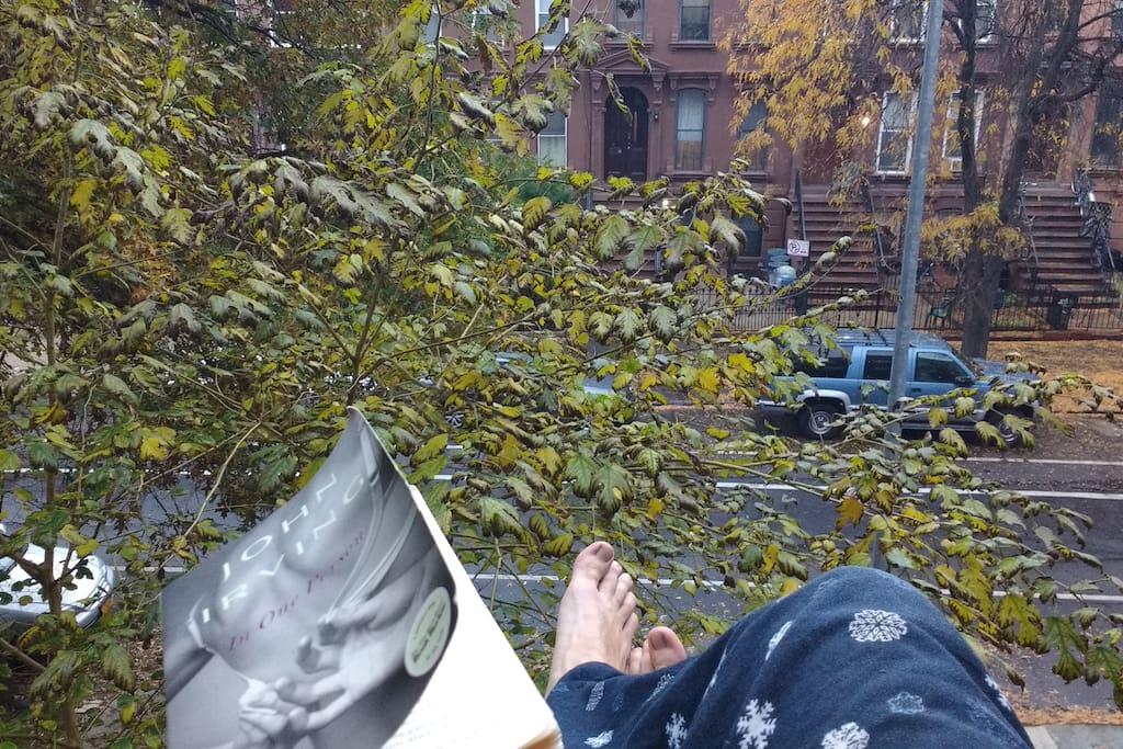 Sitting on my windowsill