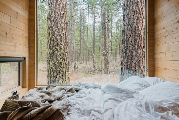 Getaway Piney Woods