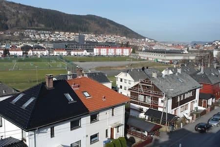Bergen Apt. with a Nice View - Bergen